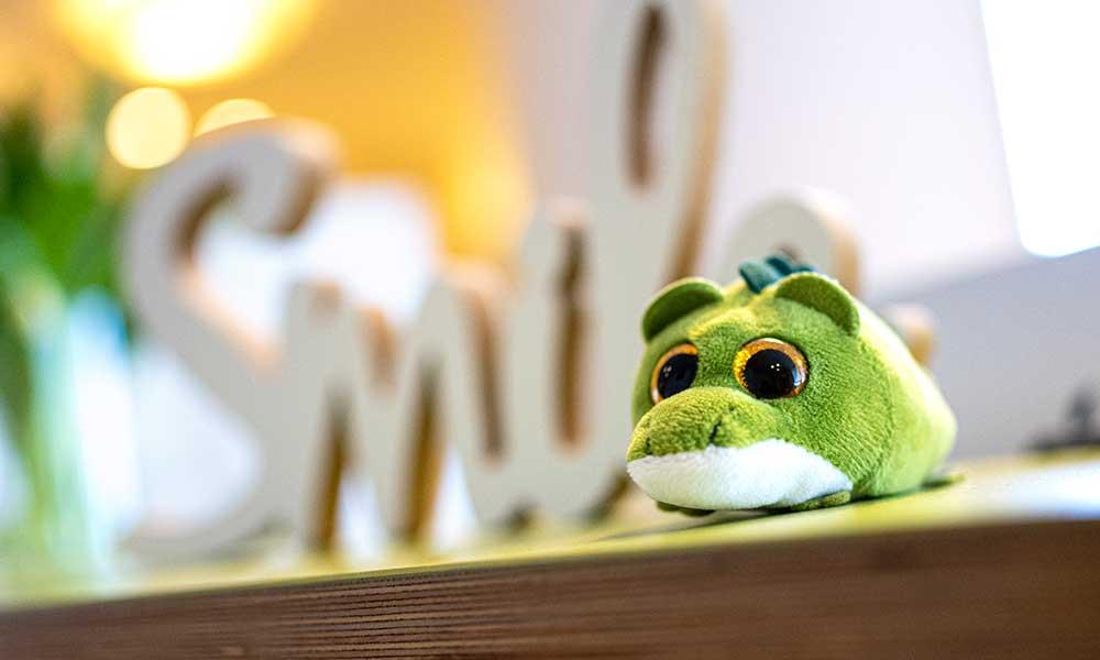 Grünes Stofftier liegt auf einem Tisch. Unscharf im Hintergrund steht Smile.